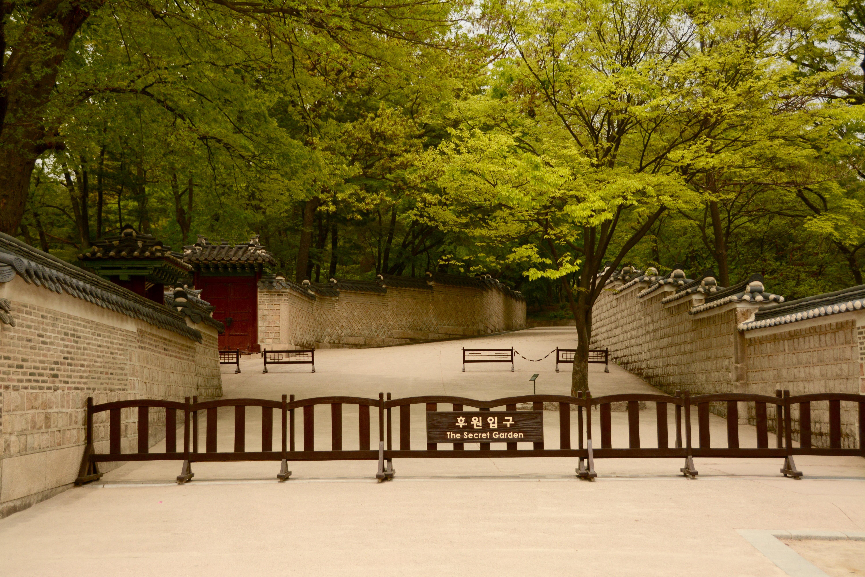 Changdeokgung Palace and Secret Garden – qtKitchen